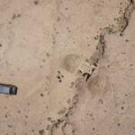 Arial photo of Roman waterchannel, located in Udhruh Jordan